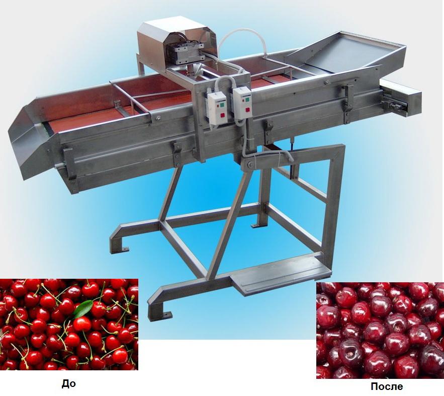 Машина для удаления плодоножек из вишни